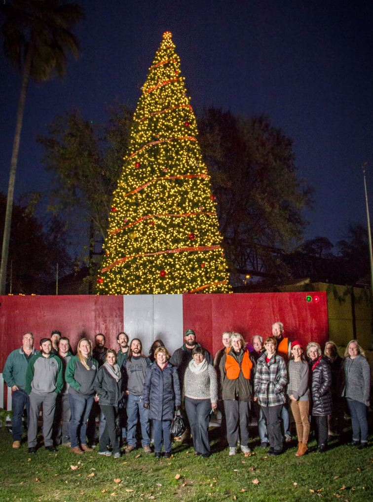 group picture in front of holiday tree