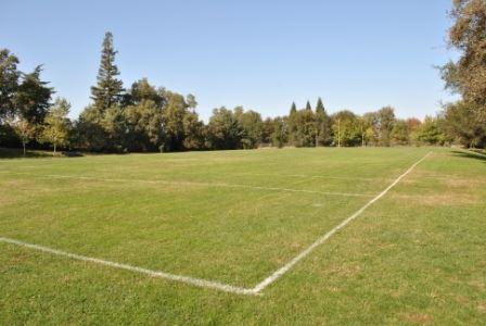 Multi-Purpose Field